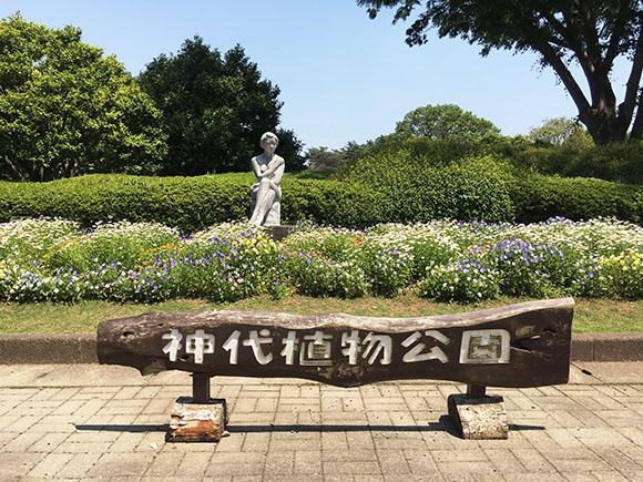2017-jindai_9818b.jpg