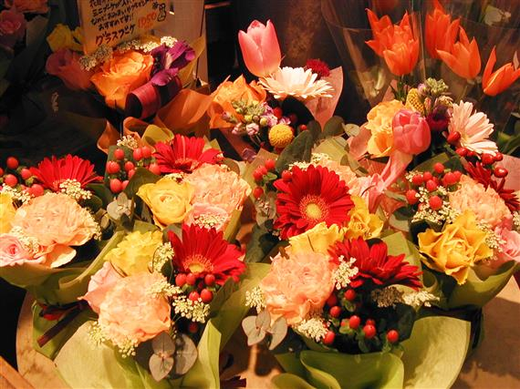 flower_P1010160a.jpg