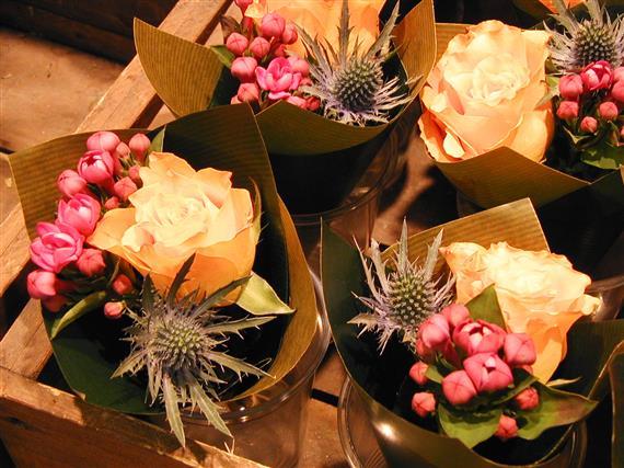 flower_P1010163a.jpg