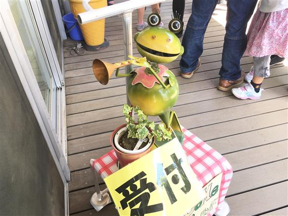 frog_9114a.jpg