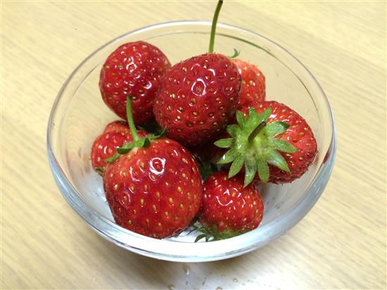 strawberry_074a.jpg