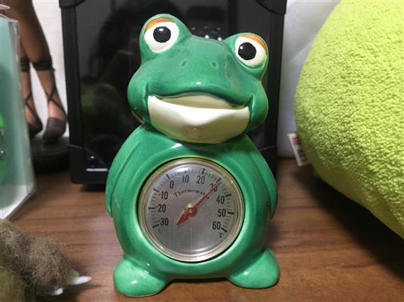 Frog_1489a.jpg