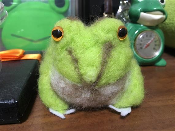 Frog_1498a.jpg