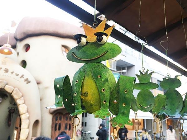Frog_3642a.jpg