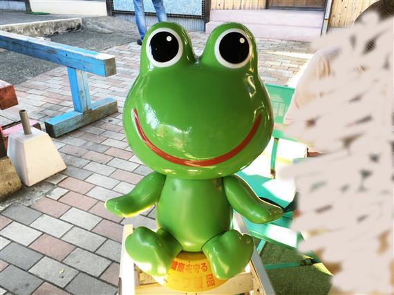 Frog_6129a.jpg