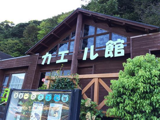 awashima_481a.jpg
