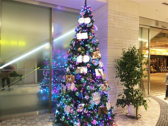 christmas-tree_3032a.jpg