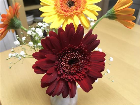 flower_0633c.jpg