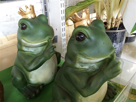 frog_117a.jpg