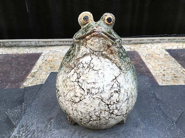 frog_1379a.jpg