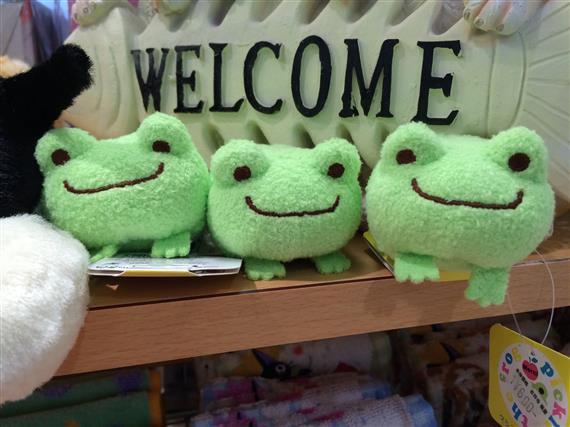 frog_8785a.jpg