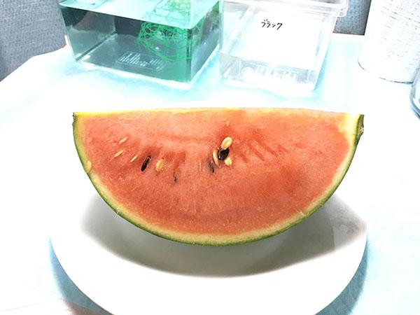 fruit_6852a.jpg