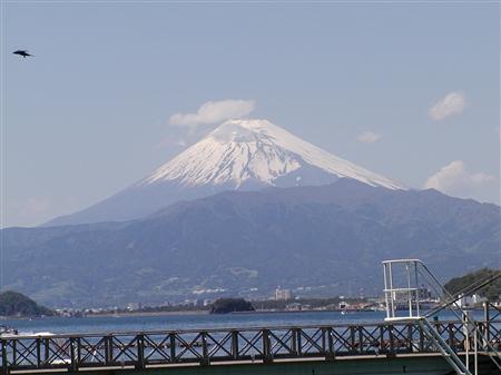 fuji_P1010132.JPG