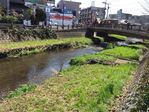 higashikurume_4714.JPG