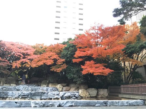 ikebukuro_2057a.jpg