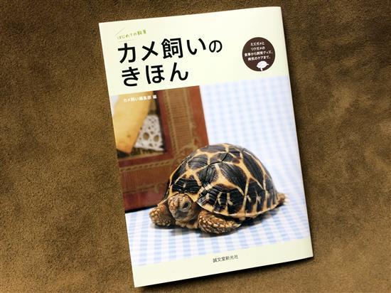 mane-book_7261a.jpg
