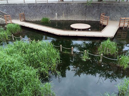 sanpo_6646a.jpg