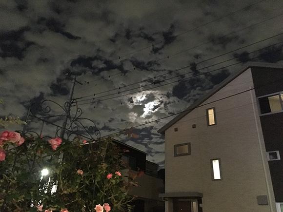 sky_8283a.jpg