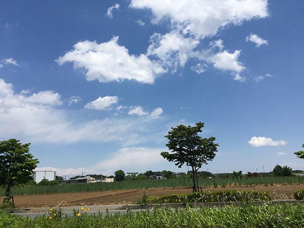 sky_9819a.jpg