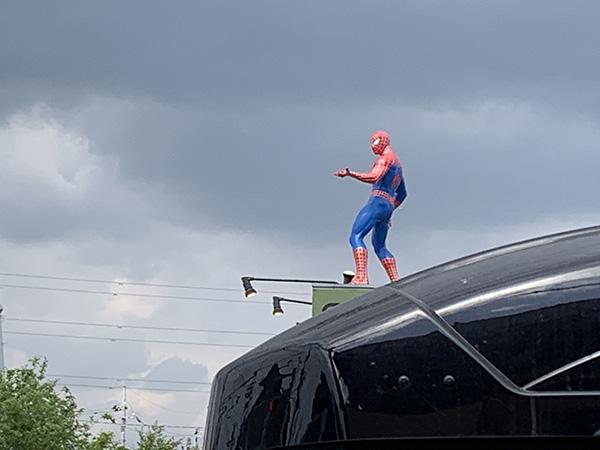 spiderman_2895a.jpg