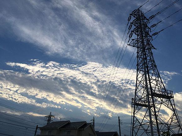 summer_4911b.jpg