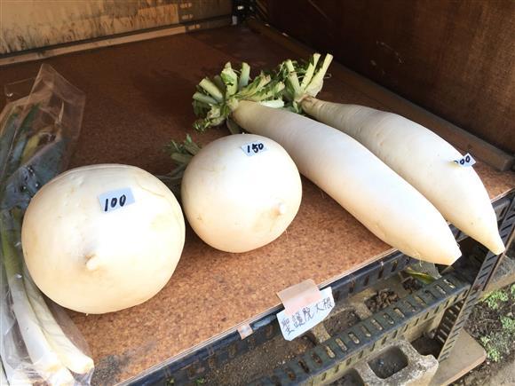 vegetables_4123a.jpg